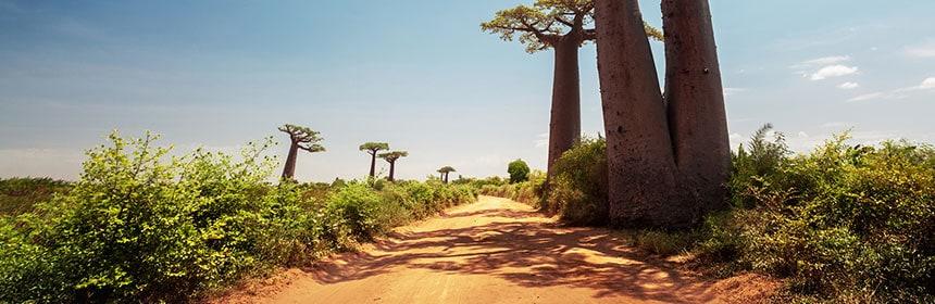Madagaskar, Afrikka